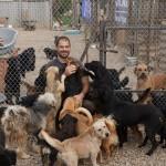 Alex und Hunde