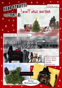 Strottl Weihnachten 2013